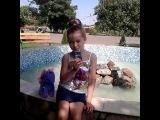 iam_elena_kot video