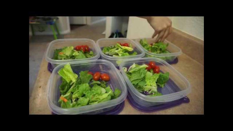 Super EASY Meal Prep for WEIGHT LOSS Vegan and Non Vegan options! Jordan Cheyenne