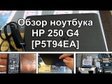 Ноутбук HP 250 G4 (P5T94EA) - обзор, тесты, разборка, сравнение с одноклассниками