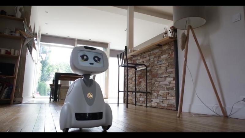 BUDDY - Your Family's Companion Robot - Multi-language (EN - FR- DE- JP- CN)