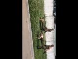 Как в армии убирают газон