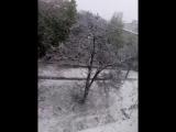 Падал белый снег в апреле