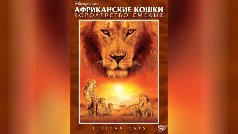 Королевство (1994) | Riget