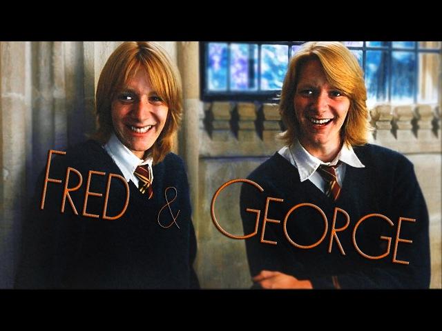 The Weasley Twins ✘ Mischief Managed