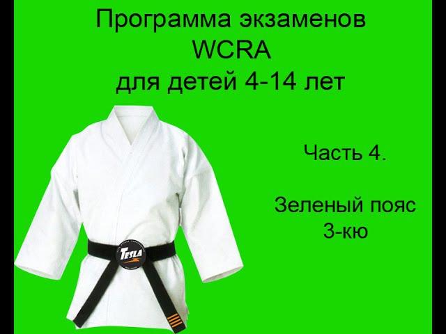 Детская программа экзаменов на пояса в Реальном айкидо на зеленый пояс