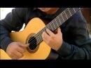 Somewhere My Love (Lara's Theme from Dr. Zhivago) guitar arrangement by Nemanja Bogunovic