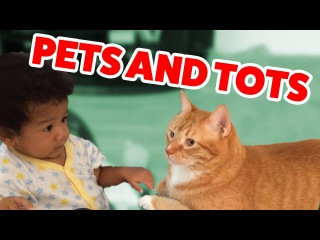 The Funniest Pets Meet The Cutest Kids & Babies of 2016 Weekly Compilation | Funny Pet Videos