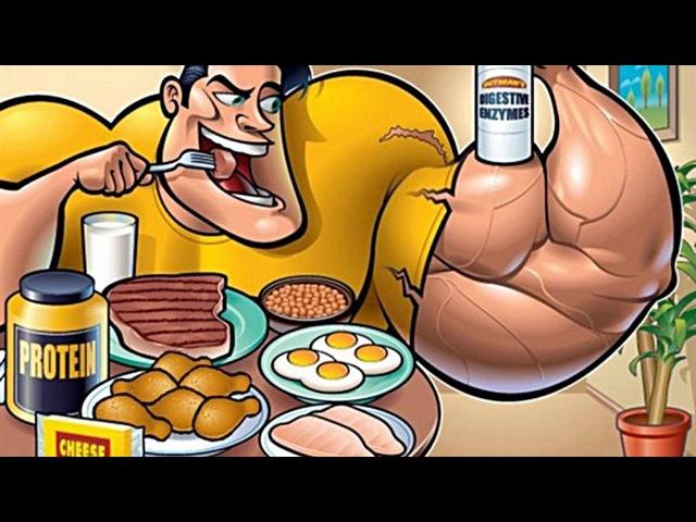 Лучший белок для набора массы