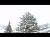 Зимняя  прогулка.Тест Экшн-камеры X-TRY XTC 220