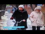 Падение лебедей в Нестерове..пос.Чернышевское.
