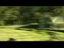 Подборка аварий на гонках, самые жестокие и зрелищные автокатастрофы, машины в дребезги 18