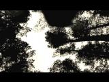 Fejd - I en tid som var (HD-Quality Video)