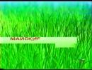 Рекламные заставки (РТР, 15.09.2001-31.08.2002)