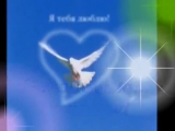 Ринат Сафин - Белый Голубь (1)