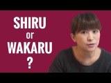 Ask a Japanese Teacher - Difference Between SHIRU and WAKARU?