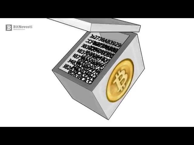 Как работает Bitcoin? Все технические детали за 20 минут | BitNovosti.com