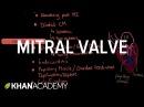 Mitral valve regurgitation and mitral valve prolapse NCLEX-RN Khan Academy