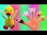 палец семьи животное  палец семьи рифму  дети песня сборник  Animal Finger Family  Baby Song