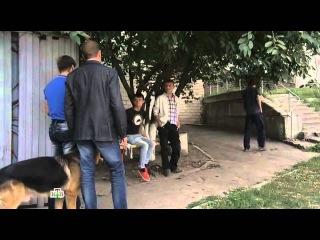 Возвращение Мухтара 2 9 сезон 15 серия - Помеха счастью