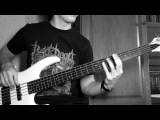 Born Of Osiris - A Higher Place (bass cover)