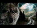 Павел Филатов - Тропою волчьей