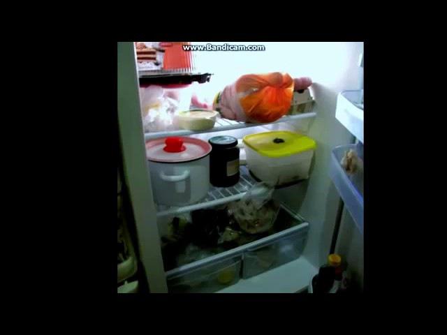 Наш холодильник