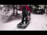 Baltmotors Snowdog в зимнем лесу