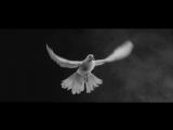 Вячеслав Рыбиков feat Bria Blessing - Вiрю