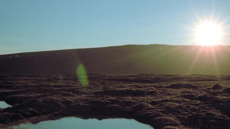 Замёрзшая планета - Гренландская волнянка ...