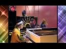 Goodbye Yellow Brick Road ~ Elton John ~ Muppet Show