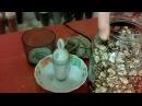 Эко питание Топинамбур. Употребление: порошок корня. Jerusalem artichoke. Use: Powder from the root.
