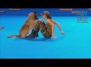 Campionato mondiale dogdance Russia - Mosca - finale FS Lusy and Deril Italy (routine Military)