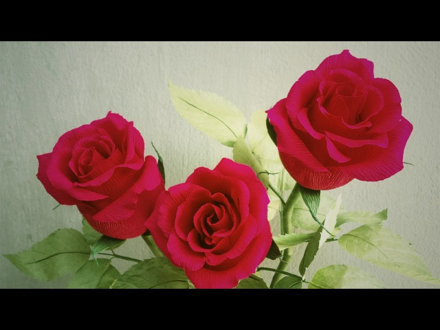 ABC TV   How To Make Ecuador Rose Paper Flower From Crepe Paper - Craft Tutorial