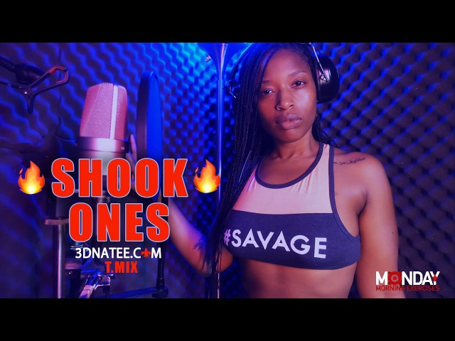 3D Na'Tee - Shook Ones T.Mix