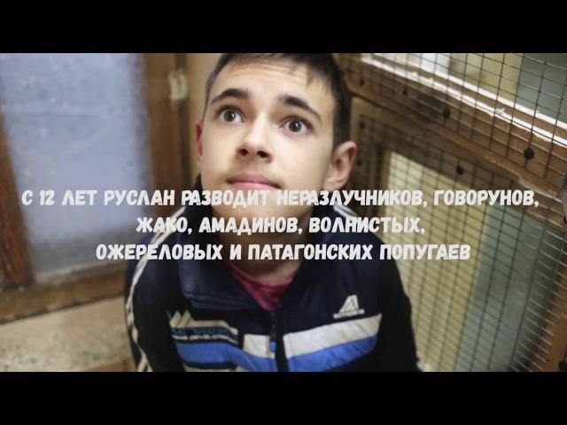 Руслан: история редкого мальчика, который продает редких птиц