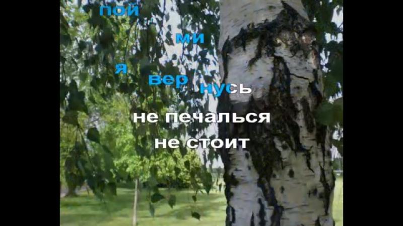С.Безруков и Н. Расторгуев(ЛЮБЭ) - Березы.avi(караоке)_9569