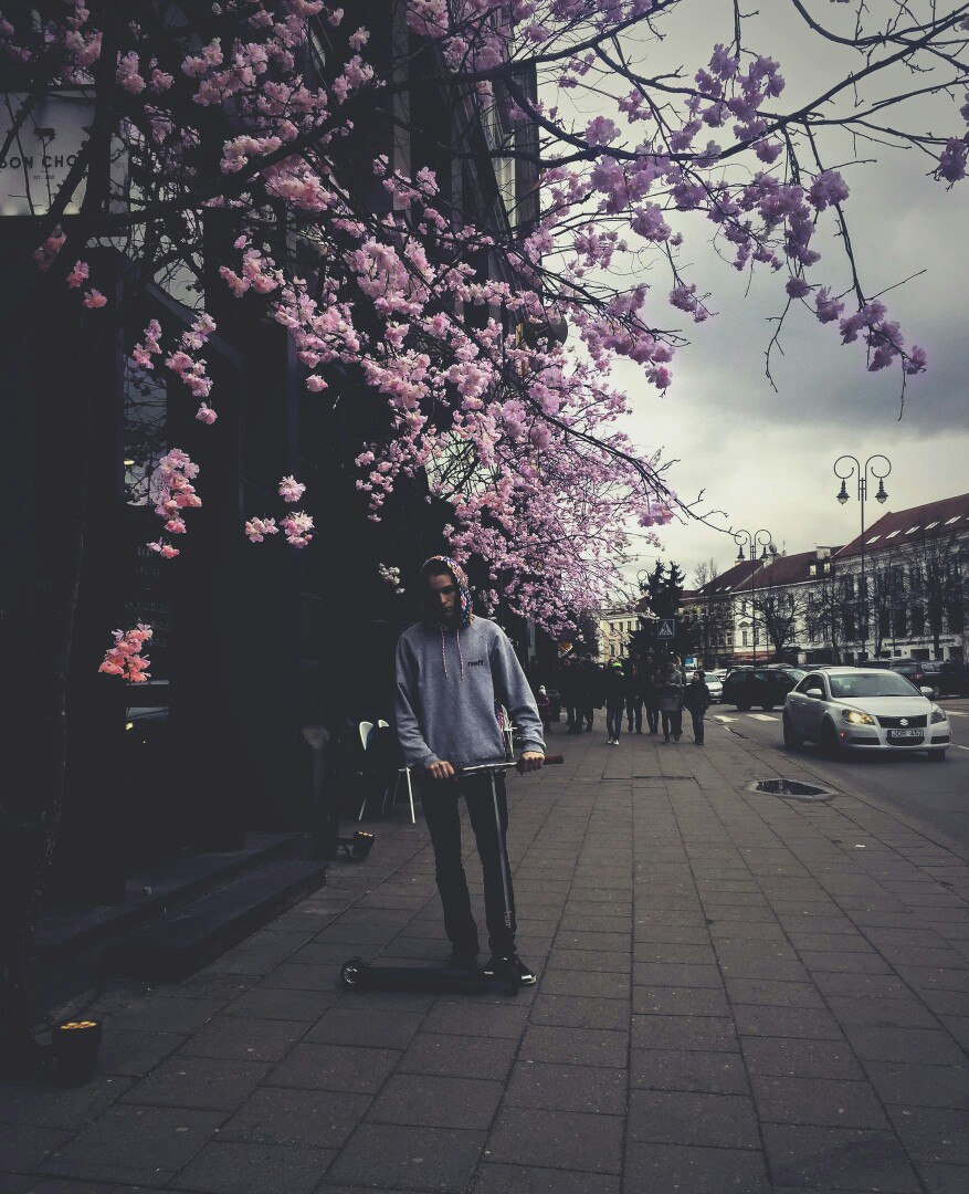 Vova Voronkov, Минск - фото №1