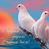 Анкета Екатерина Чайка