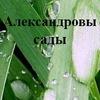 """Александровы сады"" Саженцы, рассада."
