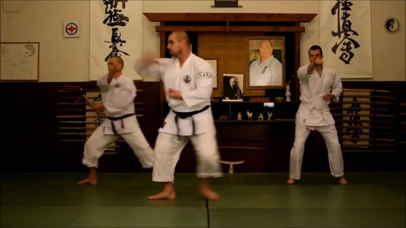 Aikibudo of Alain Floquet