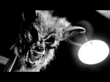Korn - Making of 'Rotting In Vain'