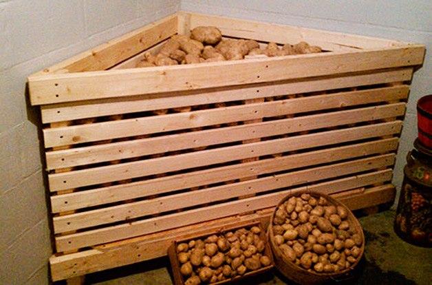 Зимнее хранение овощей - УРЦ Медведь
