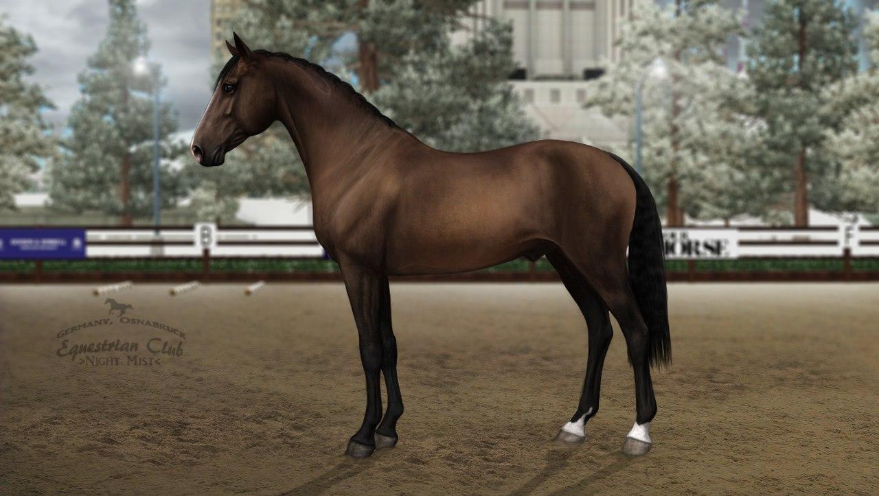 "Equestrian Club ""Night Mist"" [Внезапное появление... стр.5] - Страница 4 ELOBJCy3ZK8"