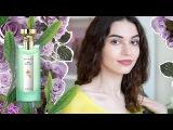 История чая и камелий. Чайные ноты в парфюмерии  Anisia Beauty