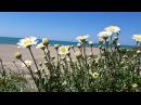 Прогулка у моря. Весна в садах Ландриана, в 30км от Рима. Giardini della Landriana,Tor San Lorenzo