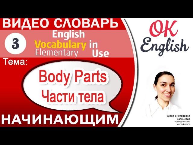 Тема 3 Parts of the Body - Части тела на английском.📕 Английский видео словарь для начинающих