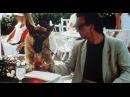 К-9 Собачья работа / K-9 1989 трейлер ENG