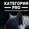 "Автошкола ""Категория - ПРО"" (СибГИУ)"