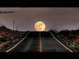 James Cotton  - Black Night