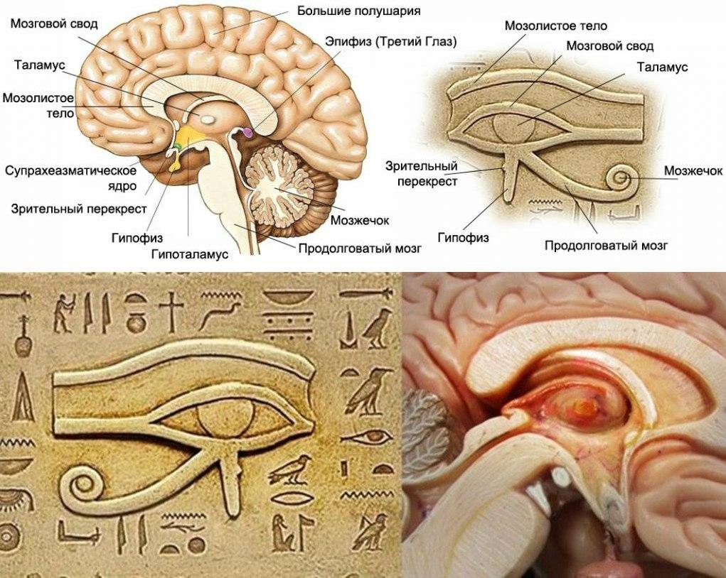 Практическая диагностика. Экзорцизм. Открытие 3-го глаза. Повышение вибраций. - Страница 6 E89WHKKaeHE